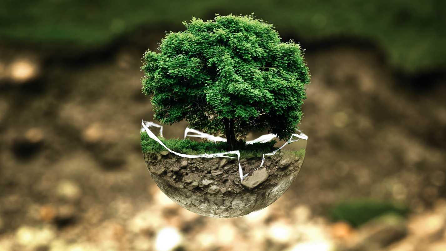 Как осуществляется проведение экологического аудита